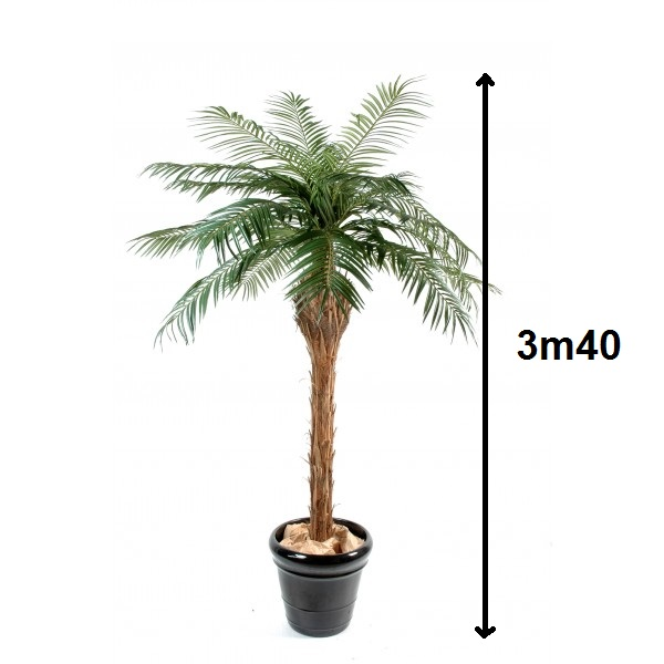 Location de palmier géant artificiel en Ile de France