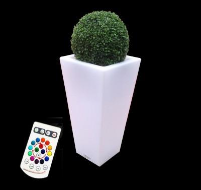 Location de Vase lumineux avec Boule de Buis à Paris