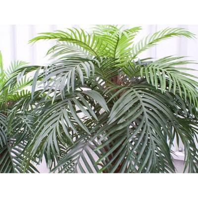 Location de palmier artificiel en Ile de France